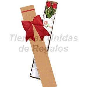 Deliregalos.com - Caja de Rosas 02 - Codigo:CJS02 - Detalles: Hermosa caja ecol�gica con 2 rosas, lazo rustico, incluye tarjeta de dedicatoria. - - Para mayores informes llamenos al Telf: 225-5120 o 476-0753.