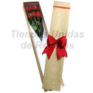 Deliregalos.com - Caja de Rosas 07 - Codigo:CJS07 - Detalles: Caja ecol�gica con 7 rosas importadas, lazo r�stico, incluye tarjeta de dedicatoria. - - Para mayores informes llamenos al Telf: 225-5120 o 476-0753.