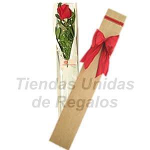 Deliregalos.com - Caja de Rosas 17 - Codigo:CJS17 - Detalles: Caja ecol�gica con 1 rosa importada, incluye tarjeta de dedicatoria.  - - Para mayores informes llamenos al Telf: 225-5120 o 476-0753.