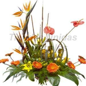 Deliregalos.com - Corporativo 13 - Codigo:CPT13 - Detalles: Hermoso detalle compuesto por 3 aves del paraiso, 2 anturios, 8 gerberas, liliums amarillos, gracenia, 9 rosas amarillas, diversas flores y follajes de estacion, todo en una base de ceramica, incluye una tarjeta de dedicatoria. - - Para mayores informes llamenos al Telf: 225-5120 o 476-0753.