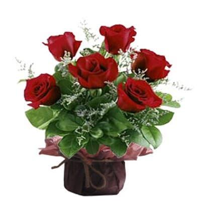 Ceramica 6 Rosas | Regalos Dia De La Mujer - Cod:DMJ34