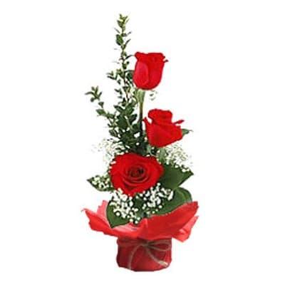 Ceramica 3 Rosas | Regalos Dia De La Mujer - Cod:DMJ35
