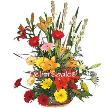 Diloconrosas.com - Felicidades - Codigo:AGF23 - Detalles: Especial arreglo compuesto por una canasta de mimbre conteniendo 12 gerberas multicolor, iris, azucenas, liliums, flores y follaje de estacion.  - - Para mayores informes llamenos al Telf: 225-5120 o 476-0753.