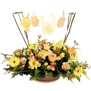 Lafrutita.com - Es Ni�o - Codigo:AGN32 - Detalles: Tendal para ni�o recien nacido, compuesto de una cesta de mimbre, gerberas, 6 rosas,astromelias, pompones, gladiolina,azucenas, iris, hojas y follaje de estacacion. Incluye Ropa para Ni�o recien nacido en un rustico tendal con ganchitos de madera.  - - Para mayores informes llamenos al Telf: 225-5120 o 476-0753.