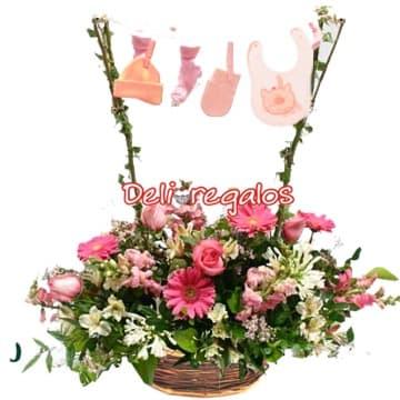 Lafrutita.com - Es Ni�a - Codigo:AGN33 - Detalles: Tendal para  ni�a recien nacida, compuesto de una cesta de mimbre, gerberas, 6 rosas,astromelias, pompones, gladiolina,azucenas, iris, hojas y follaje de estacacion. Incluye Ropa para Ni�a recien nacida en un rustico tendal con ganchitos de madera.  - - Para mayores informes llamenos al Telf: 225-5120 o 476-0753.