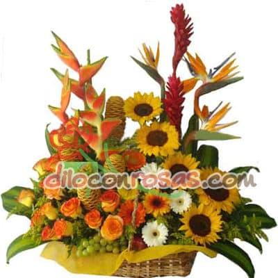 Diloconrosas.com - Espectacular arreglo en base de mimbre grande contiendo, Aves del Paraiso, Flores Tropicales. 5 Girasoles, Botones de Oro, 6 rosas importadas y Flores de estacion. - Atendemos 24 horas. Llamar al 225-5120 o via Whatsapp: 980-660044