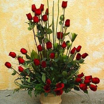 I-quiero.com - Gracia de 45 Rosas - Codigo:GCM10 - Detalles: Base de ceramica, 45 rosas importadas segun imagen. altura del arreglo de 70cm. Incluye tarjeta de dedicatoria y follaje de estaci�n. - - Para mayores informes llamenos al Telf: 225-5120 o 476-0753.