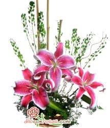 Deliregalos.com - Don de amor - Codigo:NAV05 - Detalles: Imponente arreglo floral, compuesto por 3 liliums perfumados, flores y follaje de estacion en base ceramica - - Para mayores informes llamenos al Telf: 225-5120 o 476-0753.