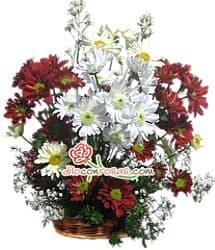 Deliregalos.com - Feliz Navidad - Codigo:NAV09 - Detalles: Arreglo compuesto por flores blancas, rojas, follaje de estacion, base ceramica. - - Para mayores informes llamenos al Telf: 225-5120 o 476-0753.