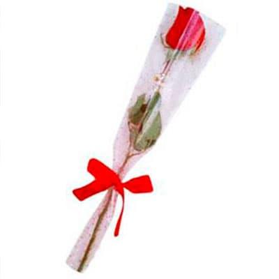 I-quiero.com - Rosa en Celofan - Codigo:SEC02 - Detalles: Elegante Rosa Importada en Celofan, precio inclye lazo de cinta de agua. Oferta especial por el dia de la secretaria   - - Para mayores informes llamenos al Telf: 225-5120 o 476-0753.