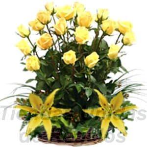 Arreglo de Rosas 15 - Codigo:XBR15 - Detalles: Elegante arreglo floral compuesto por 18 rosas importadas, 2 imponentes liliums, plantas y follajes de estación, todo en una linda cesta de mimbre, incluye una tarjeta de dedicatoria. Este producto deberá ser ordenado con 2 dias utiles de anticipación. Si el pedido es realizado el mismo día  nuestra tienda podrá cambiar el color de las rosas. - - Para mayores informes llamenos al Telf: 225-5120 o 4760-753.