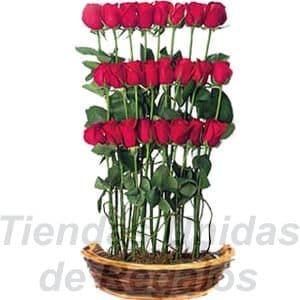 Arreglo de Rosas 24 - Codigo:XBR24 - Detalles: Hermoso detalle de 24 rosas en escalas, plantas y follajes de estacion, todo en una linda cesta de mimbre, incluye una tarjeta de dedicatoria. - - Para mayores informes llamenos al Telf: 225-5120 o 4760-753.