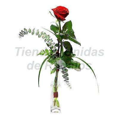 Florero 15 - Codigo:XFR15 - Detalles: Elegante florero de 1 rosas importada, plantas y follaje de estaci�n, incluye tarjeta de dedicatoria. Este pedido se realiza con 24 horas de anticipaci�n. - - Para mayores informes llamenos al Telf: 225-5120 o 4760-753.